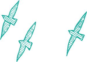 three birds flying CYAN